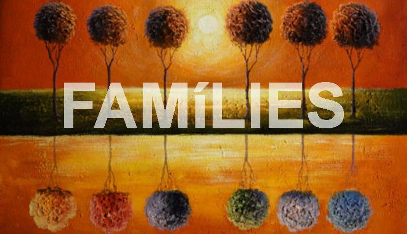 Programe Families